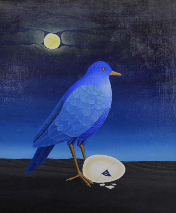 A bird in the night guards its egg with a chick just hatching. From the egg